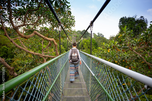 Fotografie, Obraz  Singapore tree top walk bridge