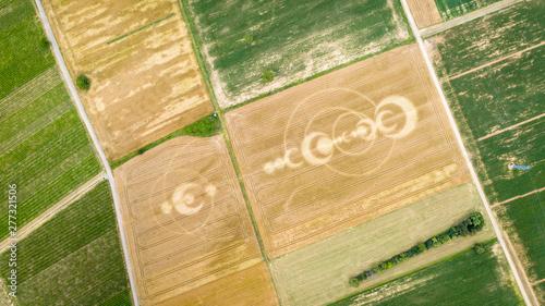 Foto crop circles field Alsace France