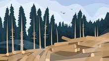 Deforestation Concept. Chopping Forest, Destruction Of Wood