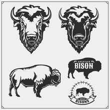 Set Of Vector Bison Silhouette...