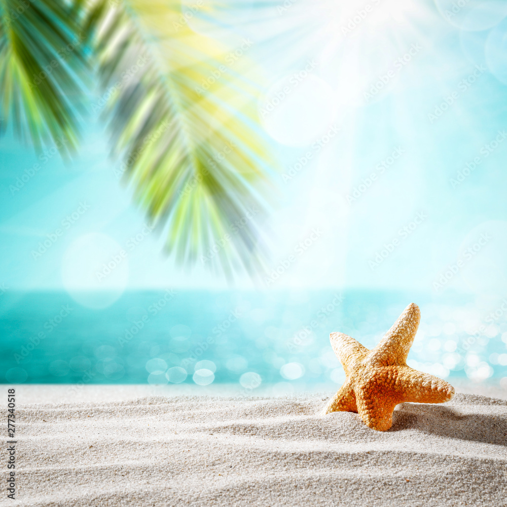 Fototapety, obrazy: Summer shell on beach and sea landscape with palm and sun.