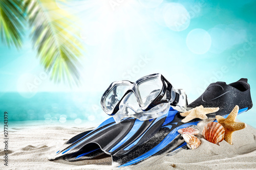 Sport fins on beach and summer time