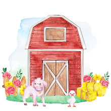 Watercolor Illustration With C...