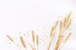 canvas print picture - spikelets of wheat on a white background