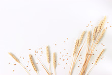 Spikelets Of Wheat On A White ...