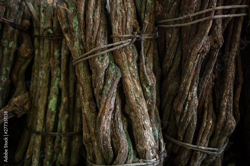 Foto close up chopped stalks of ayahuasca creeper bound and ready to cook