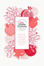 Pomegranate Fruit Design Template. Hand Drawn Vector Fruit Illustration. Engraved Style Vintage Botanical Frame.