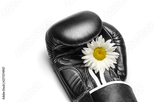 Photo boxing glove with a large chamomile flower close up