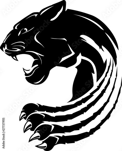 Photo  Black Panther Abstract