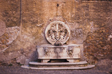 Italy, Rome, Street, Travel, Old Town, Building, Plant,  Sculpture, Street Food, Culture