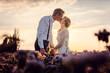 canvas print picture - Hochzeitspaar küsst sich zum Sonnenuntergang auf der Wiese nach der Hochzeit