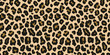 Jaguar, leopard print. Vector seamless pattern. Realistic animal skin background