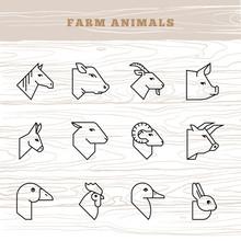 Concept Of Farm Animals. Vecto...