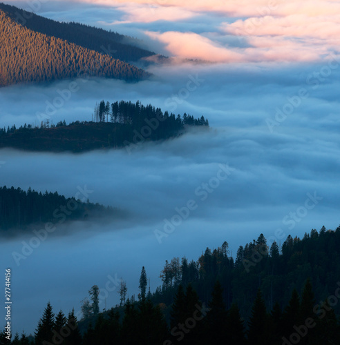 Poster Morning with fog Mountain valley filled with curly clouds at morning