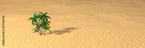 Fotografia palmiers perdus au milieu du désert