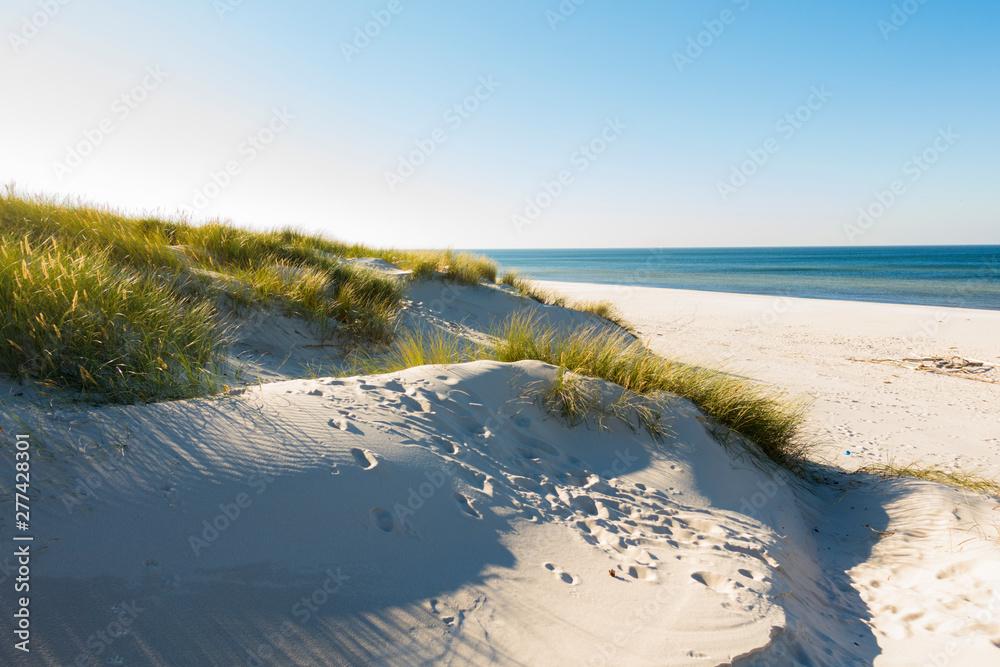 Fototapeta Czołpino wydma wydmy morze bałtyckie bałtyk piasek plaża