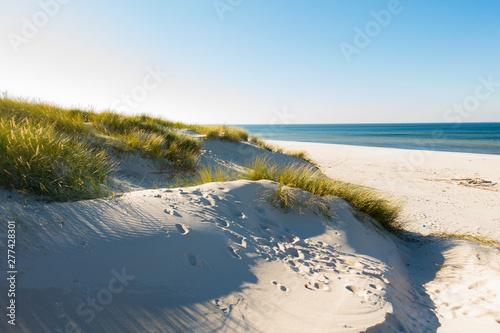 Obraz Czołpino wydma wydmy morze bałtyckie bałtyk piasek plaża - fototapety do salonu