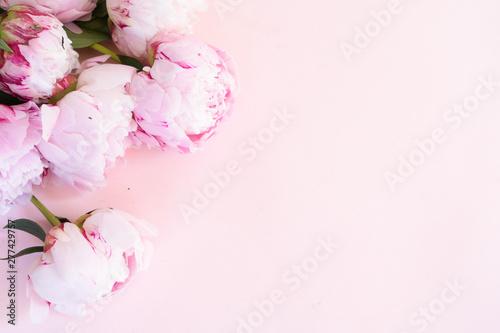 Fototapeta Fresh peony flowers