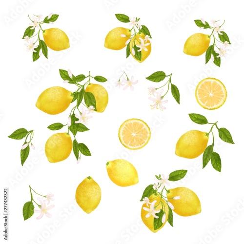 Fototapeta  Yellow citrus fruit