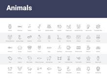 50 Animals Set Icons Such As Hamster Ball, Louse, Kennel, Sitting Rabbit, Humps, Carp, Leopard, Pit Bull, Chihuahua. Simple Modern Vector Icons Can Be Use For Web Mobile