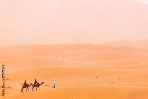 Photo Camels caravan in the dessert of Sahara with beautiful dunes in background