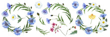 Botanical Collection Of Wildflowers: Blue Cornflowers, Pink And Yellow Flowers, White Daisies, Leaves, Twigs, Buds. Flower Frame,wreath. Watercolor.