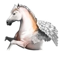 Pegasus digital art illustration isolated on white background