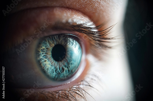 Foto op Aluminium Iris Macro photo of the woman's grey eye