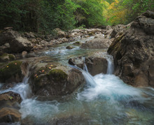 Mountain Stream In The Autumn Forest