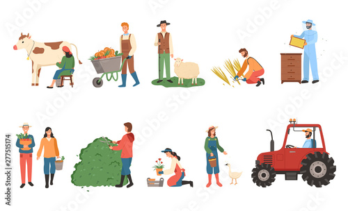 Fototapeta People farming vector, man and woman with basket and fruits, carriage with pumpkins, male with sheep and farmer lady with cow, tractor machinery set obraz na płótnie