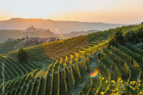 Langhe Region, vineyards at sunset Canvas Print