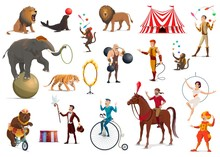 Circus Acrobat, Clown, Trained Animals, Magician