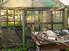 Greenhouse And A Messy Table