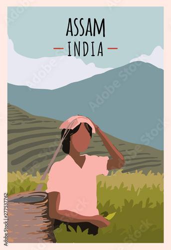 Assam retro poster Canvas Print