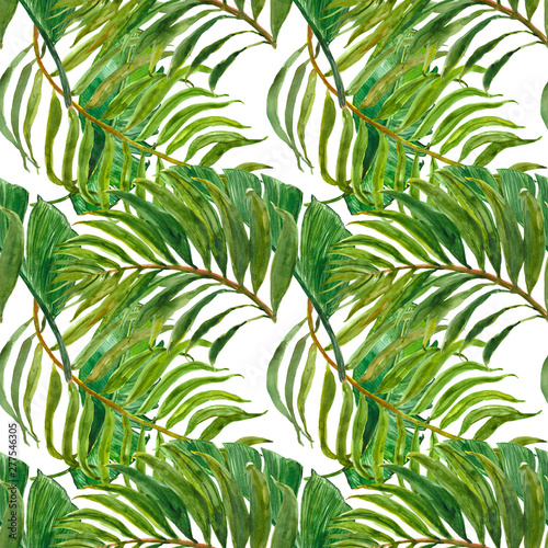 Ingelijste posters Tropische Bladeren Watercolor trendy tropical print. Seamless pattern with exotic green leaves. Hand painted palm leaf on white background. Botanical design.