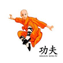 Shaolin Kung-fu Master