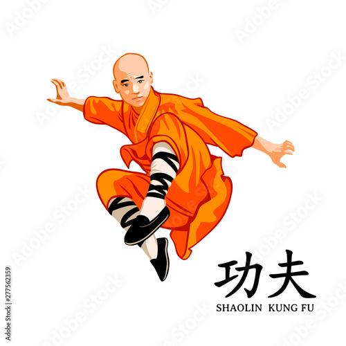 Shaolin kung-fu master Wallpaper Mural