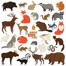 Vector Illustrations Of The Wild Animals Forest Wildlife Isolated Objects Geometric Style