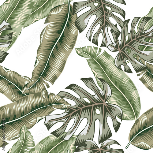 Tropical banana, monstera palm leaves, white background. Vector seamless pattern. Graphic illustration. Exotic jungle plants. Summer beach floral design. Paradise nature Wall mural