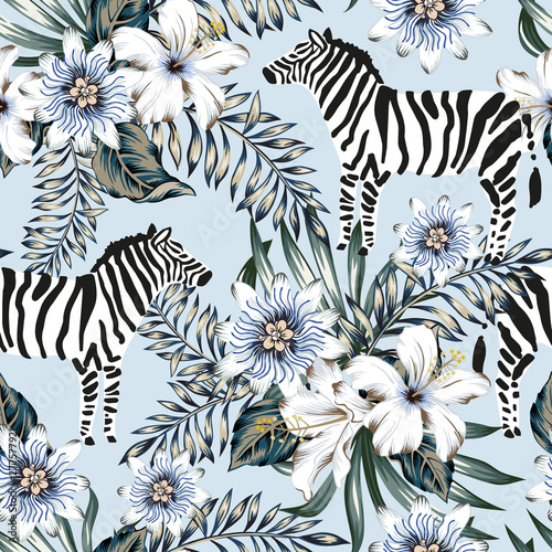 Foto Tropical zebra, palm leaves, hibiscus, passion flowers bouquets, light blue background