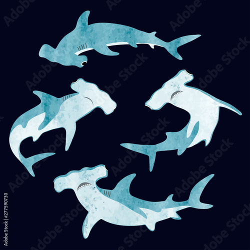 Obraz Watercolor hammerhead shark set. Vector illustration. - fototapety do salonu