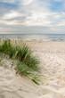 Plaża trawa i Morze Bałtyckie
