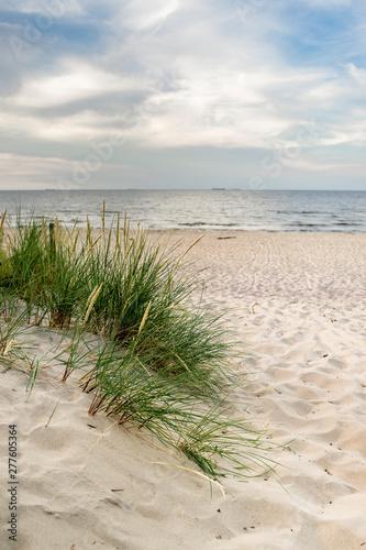 Obraz Plaża trawa i Morze Bałtyckie - fototapety do salonu