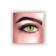 Human Eye With Yellow Reptile Pupil, Vector Illustration In Realistic Style