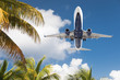 canvas print picture - Bottom View of Passenger Airplane Flying Over Tropical Palm Trees
