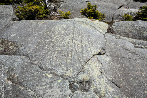 Glacial striations in gneiss at summit of Mt. Kearsarge. Fototapete