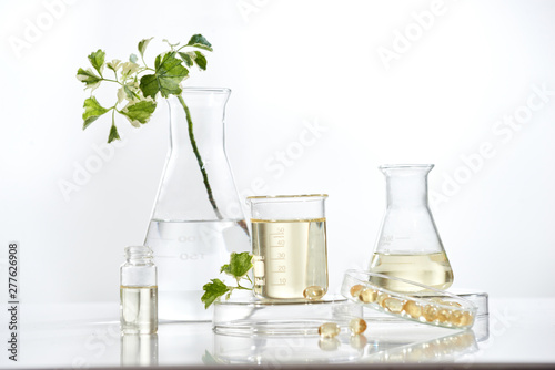 Obraz na plátně  the scientist or doctor make herbal medicine from herb in the laboratory on the table