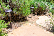Outdoor Garden In Santa Fe, New Mexico With Stone Steps Closeup Down By Plants And Lights During Day