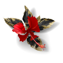 Tropical Black And Gold Leaves...