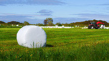 Bale Of Hay Wrapped In Plastic...